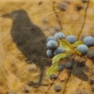 "SOLD - ""Blackthorn and Raven"", Encaustic Mixed Media on Wood Panel, 6 x 6 x 1.5 in, 2016 (Private collection of Matthew Willey and Maria Adams)"