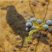 Elizabeth M. Willey - Blackthorn and Raven, Encaustic Mixed Media on Wood Panel, 6 x 6 x 1.5 in, 2016