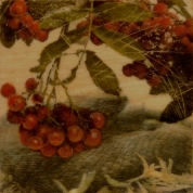 "SOLD - ""Rowan and Adder"", Encaustic Mixed Media on Wood Panel, 6 x 6 x 1.5 in, 2016 (Private collection of Matthew Willey and Maria Adams)"