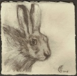 """Grey Rabbit"", Watercolor pencil on Arches paper, approximately 4.5 x 4.5 inches (h x w); unframed, 2015"