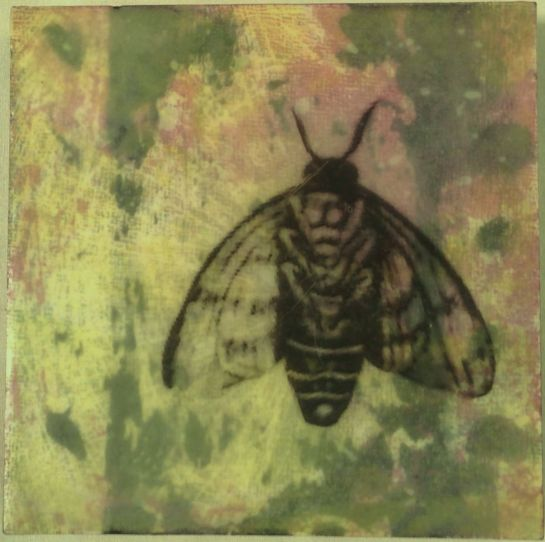 """""""Folktale Series:  Odilon's Bee"""" by Elizabeth M. Willey; Mixed media encaustic, 4 x 4 inches, 2014"""