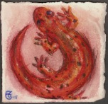 """Salamander"", Water soluble pencil on Arches paper, approximately 4 x 4 (h x w) inches, unframed, 2015"