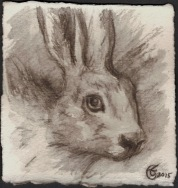 """White Rabbit"", Water soluble pencil on Arches paper, approximately 4.25 x 4 (h x w) inches, unframed, 2015"
